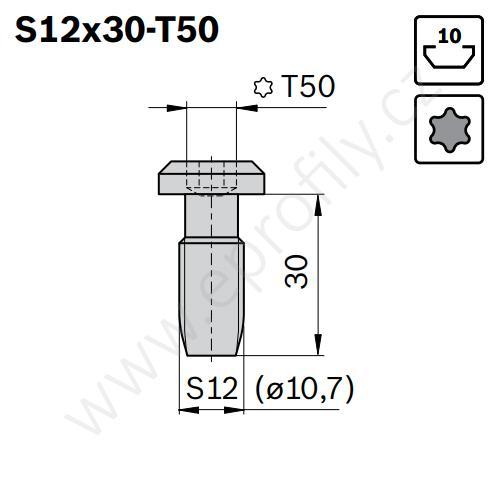 Centrální šroub samotvarovací, ESD, 3842530236, S12x30-T50, Balení (100ks)